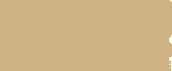 MechAnizam_Concept_Logo_2
