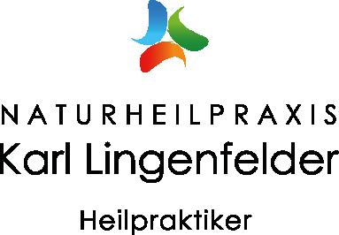 lingenfelder_logo_verlauf_pfade